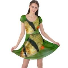 Tiger Barb Cap Sleeve Dress