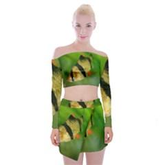 Tiger Barb Off Shoulder Top With Mini Skirt Set