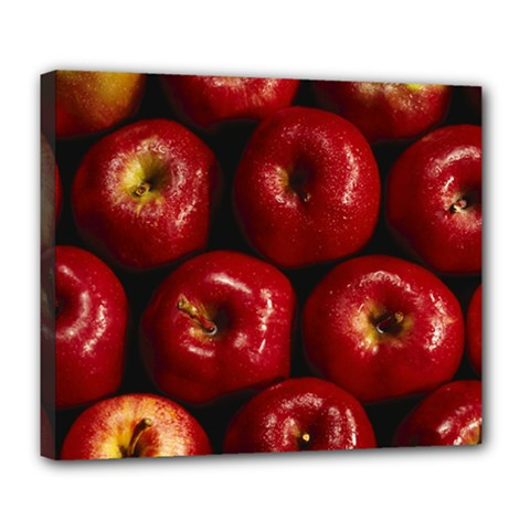 Apples 2 Deluxe Canvas 24  X 20