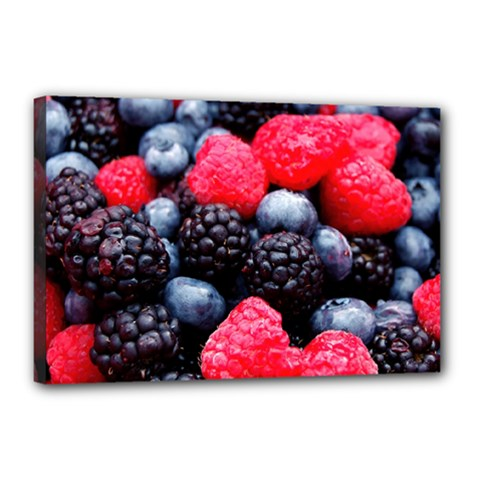 Berries 2 Canvas 18  X 12