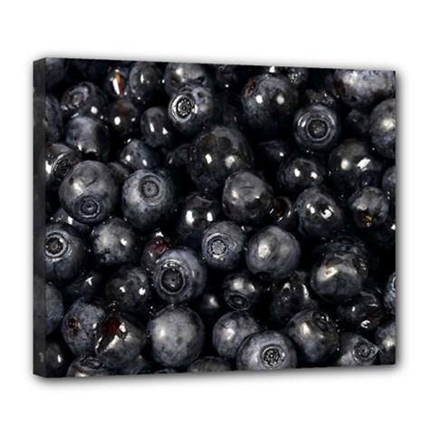 Blueberries 1 Deluxe Canvas 24  X 20