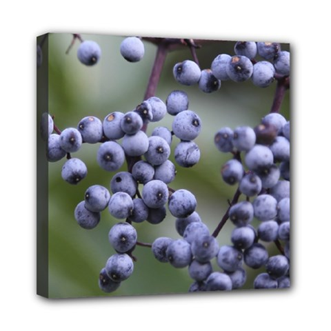 Blueberries 2 Multi Function Bag