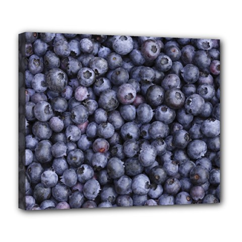 Blueberries 3 Deluxe Canvas 24  X 20
