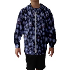 Blueberries 3 Hooded Wind Breaker (kids)