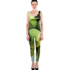 Coconuts 1 One Piece Catsuit