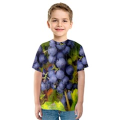 Grapes 1 Kids  Sport Mesh Tee