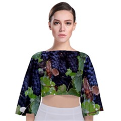 Grapes 3 Tie Back Butterfly Sleeve Chiffon Top