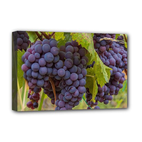 Grapes 4 Deluxe Canvas 18  X 12