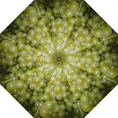 Grapes 5 Folding Umbrellas