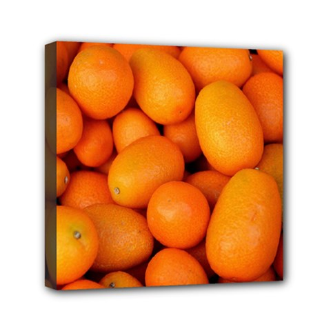 Kumquat 2 Canvas Travel Bag