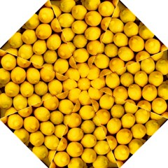 Lemons 2 Folding Umbrellas