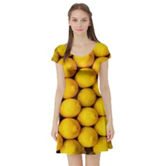 Lemons 2 Short Sleeve Skater Dress