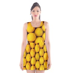 Lemons 2 Scoop Neck Skater Dress