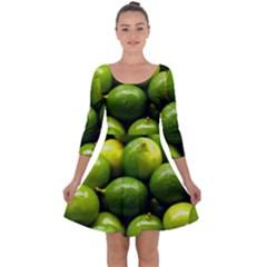 Limes 1 Quarter Sleeve Skater Dress