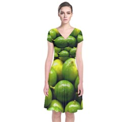 Limes 1 Short Sleeve Front Wrap Dress