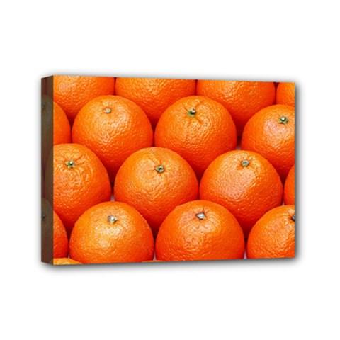 Oranges 2 Mini Canvas 7  X 5