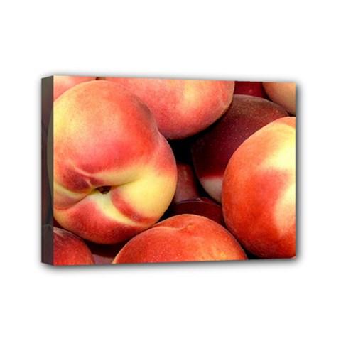 Peaches 1 Mini Canvas 7  X 5