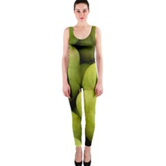 Pears 1 One Piece Catsuit