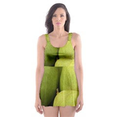 Pears 1 Skater Dress Swimsuit