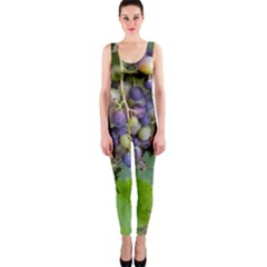 Grapes 2 One Piece Catsuit
