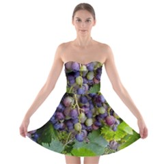 Grapes 2 Strapless Bra Top Dress