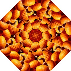 Pumpkins 3 Hook Handle Umbrellas (small)