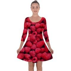 Raspberries 2 Quarter Sleeve Skater Dress