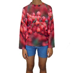 Red Berries 1 Kids  Long Sleeve Swimwear