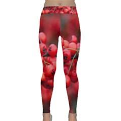 Red Berries 1 Classic Yoga Leggings