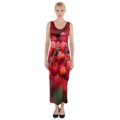 Red Berries 1 Fitted Maxi Dress