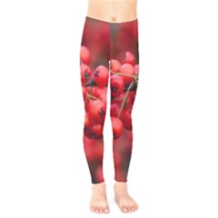 Red Berries 1 Kids  Legging