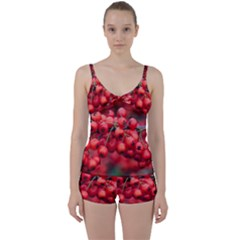 Red Berries 1 Tie Front Two Piece Tankini