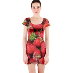 Strawberries 1 Short Sleeve Bodycon Dress