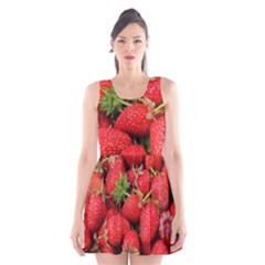 Strawberries 1 Scoop Neck Skater Dress