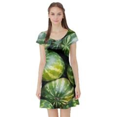 Watermelon 2 Short Sleeve Skater Dress
