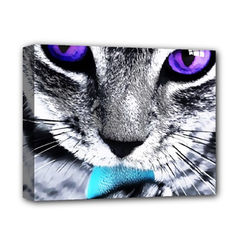 Purple Eyes Cat Deluxe Canvas 14  X 11