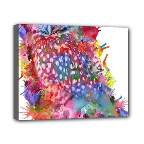 Rainbow Owl Canvas 10  X 8