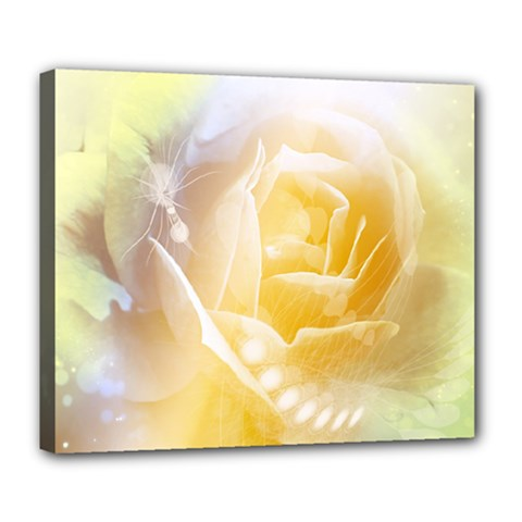 Beautiful Yellow Rose Deluxe Canvas 24  X 20