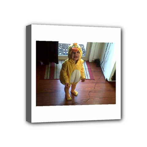 Baby Duckie 4  x 4  Framed Canvas Print