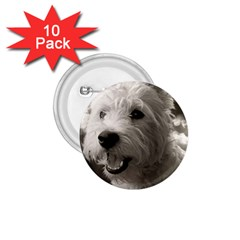 Westie Puppy 10 Pack Small Button (round)