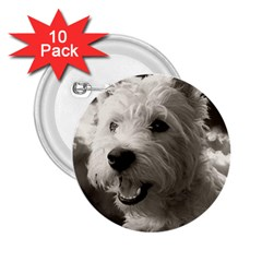 Westie.puppy 10 Pack Regular Button (Round)