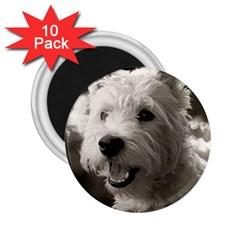 Westie.puppy 10 Pack Regular Magnet (Round)