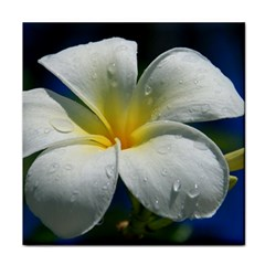 Frangipani Tropical Flower Ceramic Tile