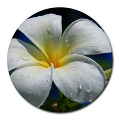 Frangipani tropical flower 8  Mouse Pad (Round)