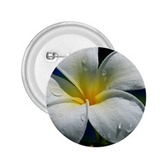 Frangipani tropical flower Regular Button (Round)