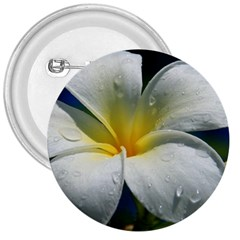 Frangipani Tropical Flower Large Button (round)