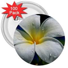 Frangipani tropical flower 100 Pack Large Button (Round)