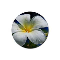 Frangipani Tropical Flower 4 Pack Rubber Drinks Coaster (round)