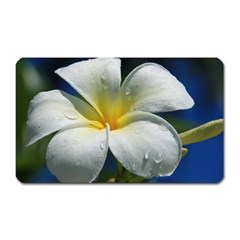 Frangipani tropical flower Large Sticker Magnet (Rectangle)