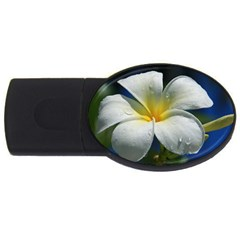 Frangipani tropical flower 1Gb USB Flash Drive (Oval)
